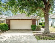 1018 Saint Ives Court, Mount Dora image