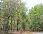 40+/-Ac Leslie Williams Rd, Lucedale image