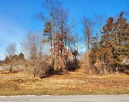 Lot 4 OAK SHORE, Green Oak Twp image