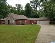 25613 Craft Road, Athens image