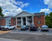 7501 Triwoods Unit #L, St Louis image