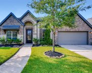 23319 Robinson Pond Drive, New Caney image