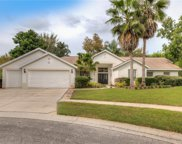 6021 Falconbridge Place, Mount Dora image