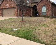 2217 Froasted Willow Lane, Fort Worth image