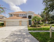 10117 Deercliff Drive, Tampa image