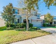 10608 Pictorial Park Drive, Tampa image