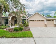 16153 Colchester Palms Drive, Tampa image