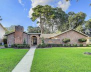 11210 Pecan Creek Drive, Houston image