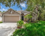 9210 Meadowmont Court, Tampa image