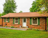 4603 Grays Point Rd, Joelton image
