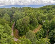 S Boogertown Rd, Sevierville image