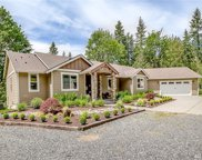 13724 Deer Mountain Rd, Arlington image