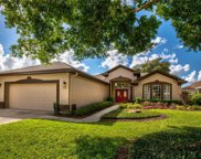 7034 Pine Hollow Drive, Mount Dora image
