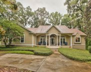 1110 W Conservancy Dr, Tallahassee image