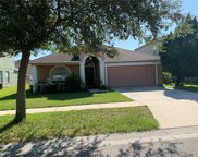 8217 Water Tower Drive, Tampa image