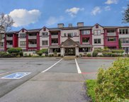3935 226th Place SE Unit 302, Issaquah image