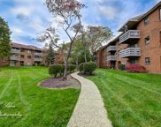 1359 North Winslowe Drive Unit 103, Palatine image