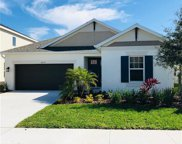 8005 Clementine Avenue, Tampa image