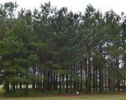 397 Autumn Pheasant Loop, Calabash image