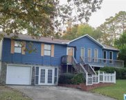 5555 Saddle Ridge Dr, Pinson image