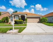 10506 Goldwater Lane, Riverview image