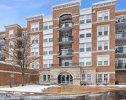 455 West Wood Street Unit 205, Palatine image