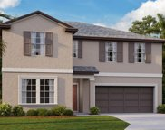 4226 Salt Springs Lane, Lakeland image