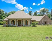 13660 Falcon Grove Dr, Walker image