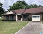 101 Dolphin Ct, Alabaster image