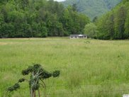 3928 Bearwallow Way, Sevierville image