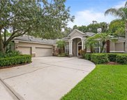 16356 Heathrow Drive, Tampa image
