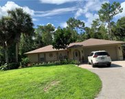 390 20th Ave Nw, Naples image