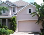 3223 Park Green Drive, Tampa image