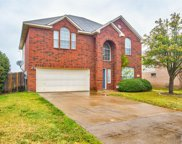 4305 Cutter Springs Court, Plano image