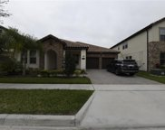 8426 Vivaro Isle Way, Windermere image