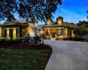 11854 Camden Park Drive, Windermere image