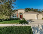 11317 Coventry Grove Circle, Lithia image