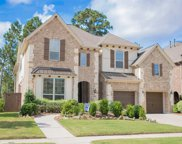13438 Sipsey Wilderness Drive, Humble image