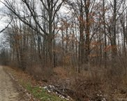 LOT A HUNT, Berlin Twp image