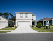 4563 Gadwall Drive, Kissimmee image