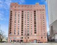345 N Canal Street Unit #408, Chicago image