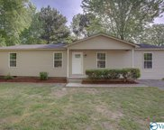 20436 Green Meadow Road, Athens image