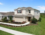 17537 Butterfly Pea Lane, Clermont image