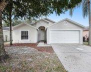 13525 Bellingham Drive, Tampa image