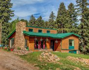 28233 Meadow Trail, Conifer image