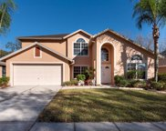 4412 Winding River Drive, Valrico image