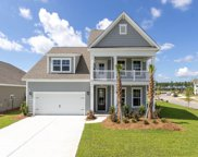 619 Chigwell Springs Lane, Summerville image