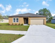 16349 Blooming Cherry Drive, Groveland image