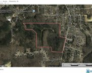 Hickory Ridge Rd Unit 52 Acres, Oneonta image