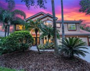 17810 Hickory Moss Place, Tampa image